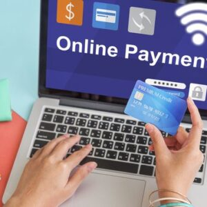 netcat solutions online payment