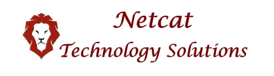 Netcat Technology Solutions